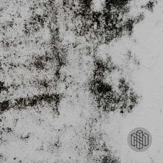 Rotten Organics cover